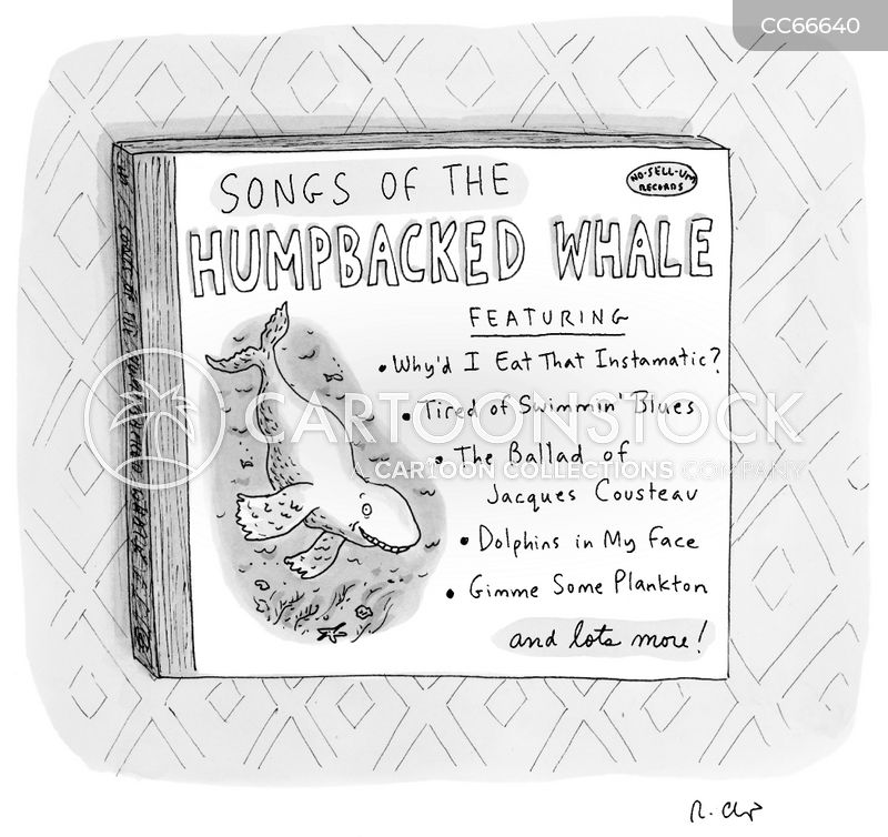 humpback whale cartoon
