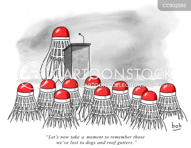 remembrance cartoon