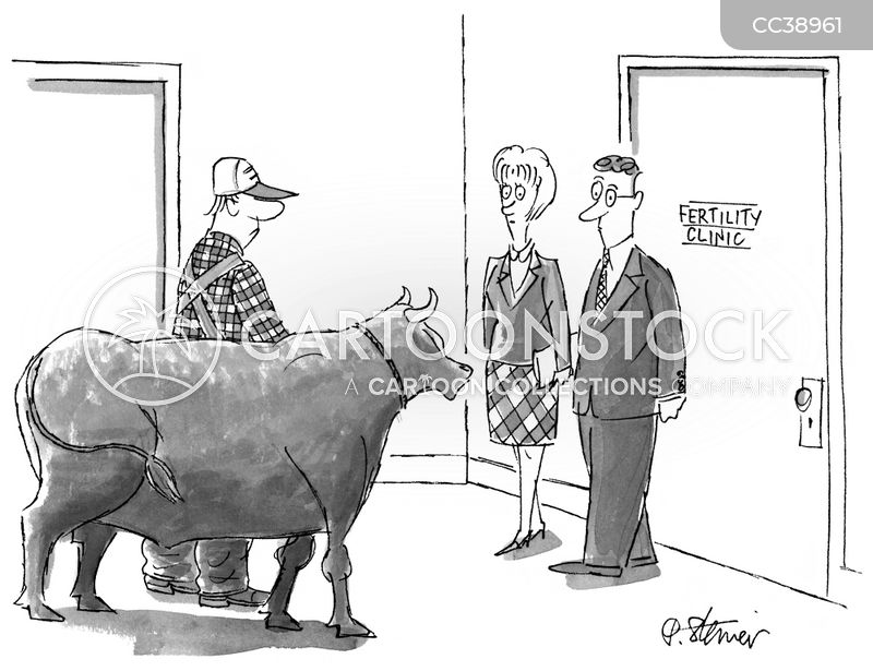 bulls cartoon