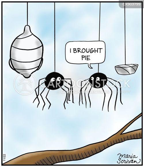 spiders webs cartoon