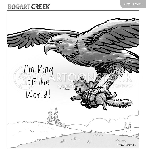 eagles cartoon