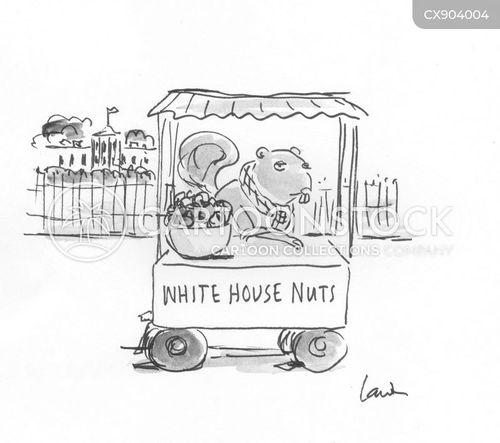 nutty cartoon