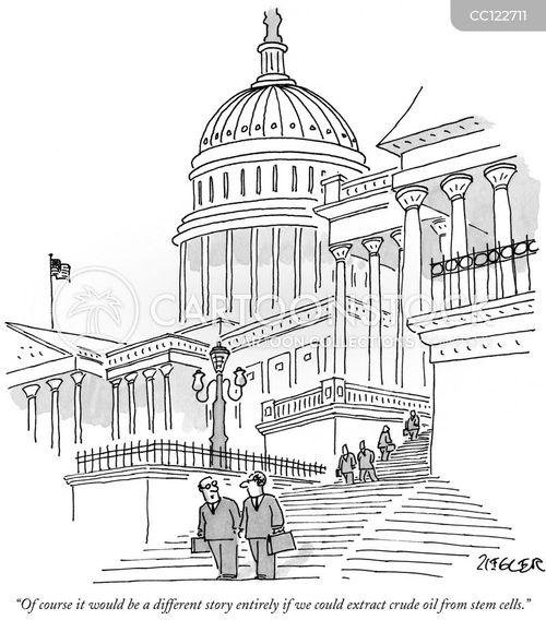 legislation cartoon