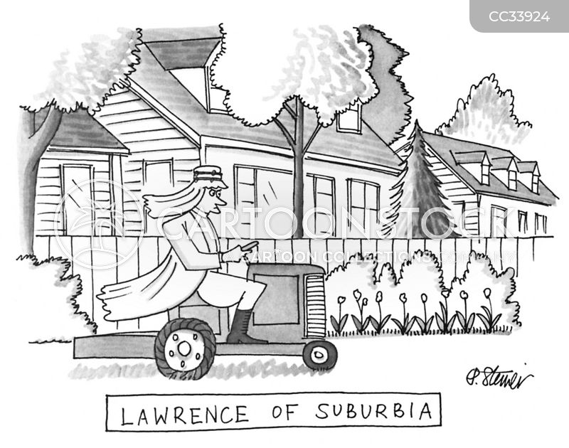 the suburbs cartoon