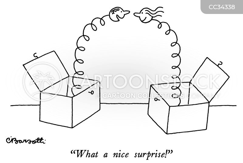 Nice Surprises cartoon