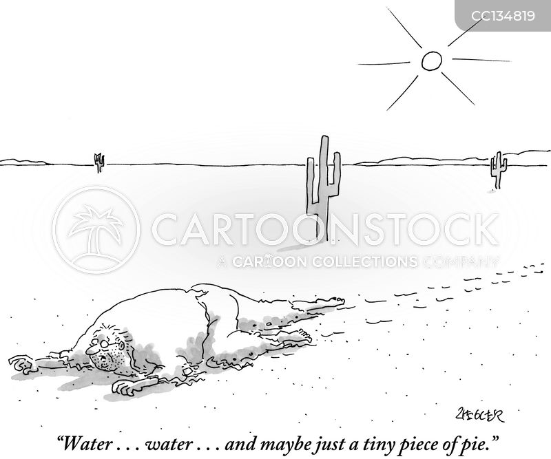 Desert cartoon