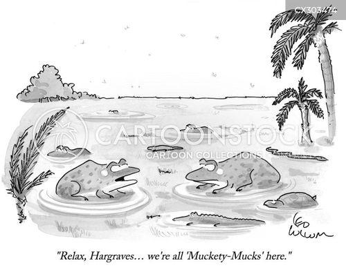 swamps cartoon