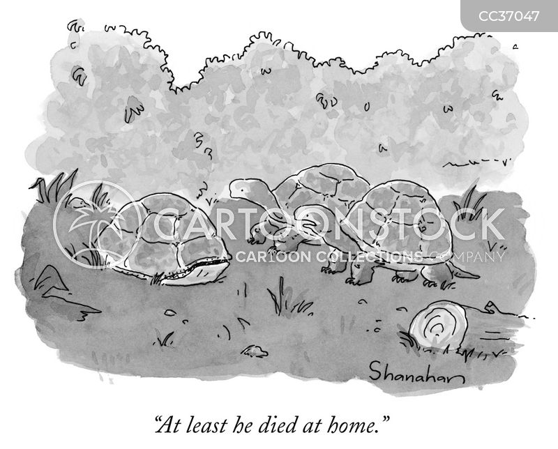 dying at home cartoon