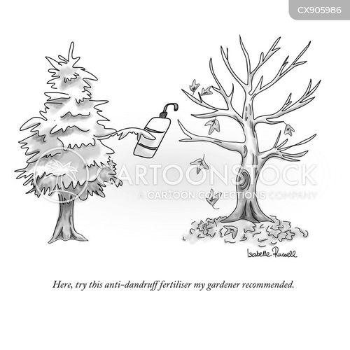 dandruff cartoon