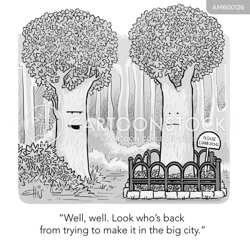 street signs cartoon