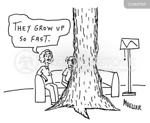 tree trunk cartoon