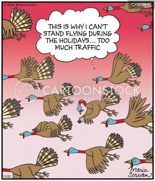 thanksgiving turkeys cartoon