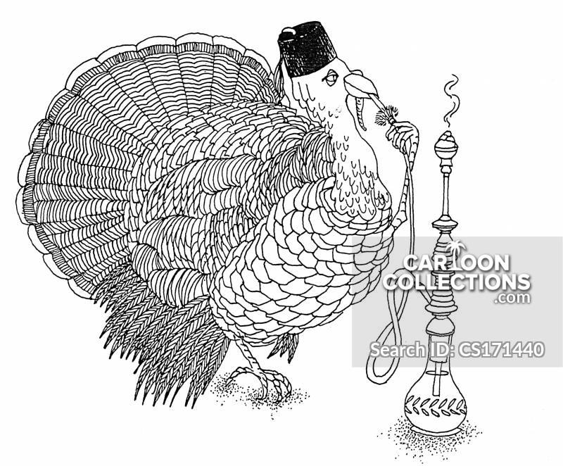 turky cartoon
