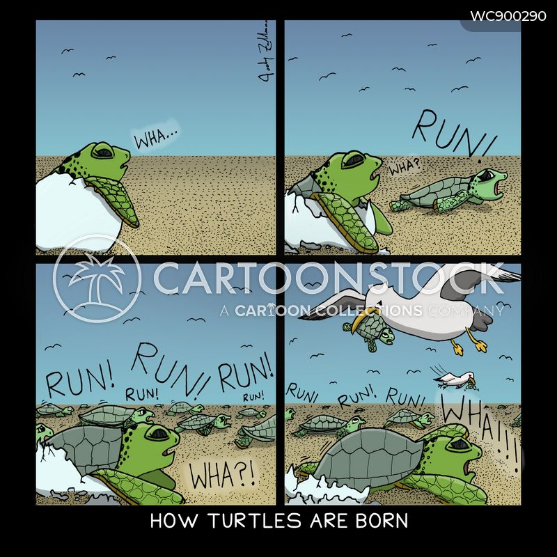 rushes cartoon