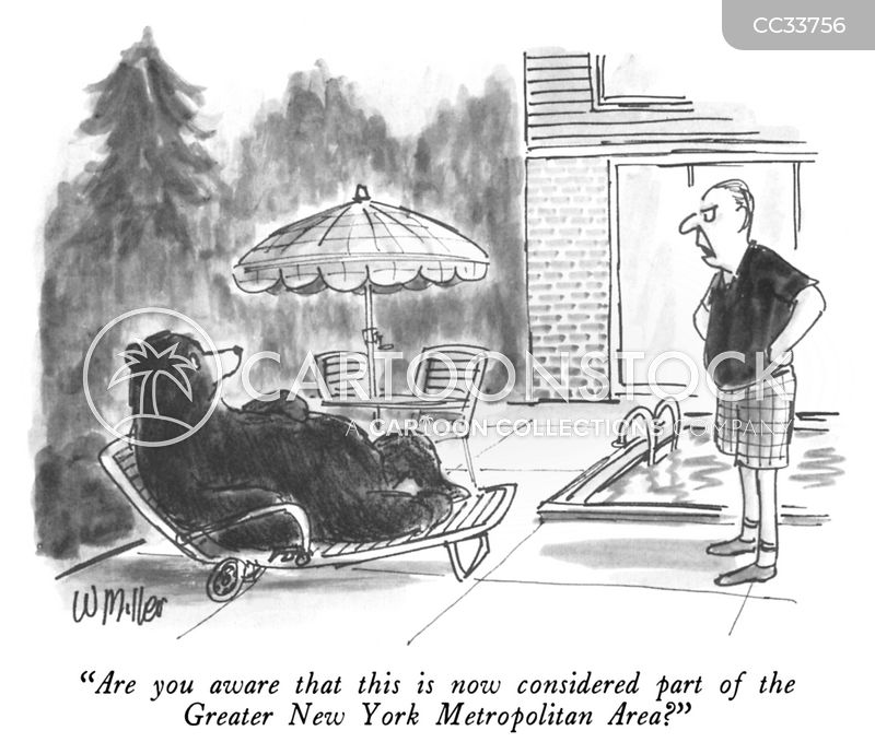 grizzly bears cartoon