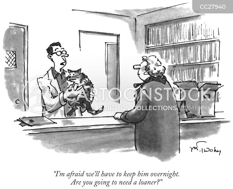 animal doctor cartoon