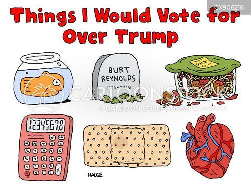 presidential races cartoon