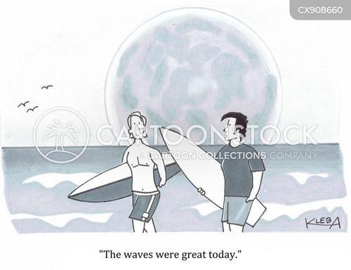 surfing cartoon