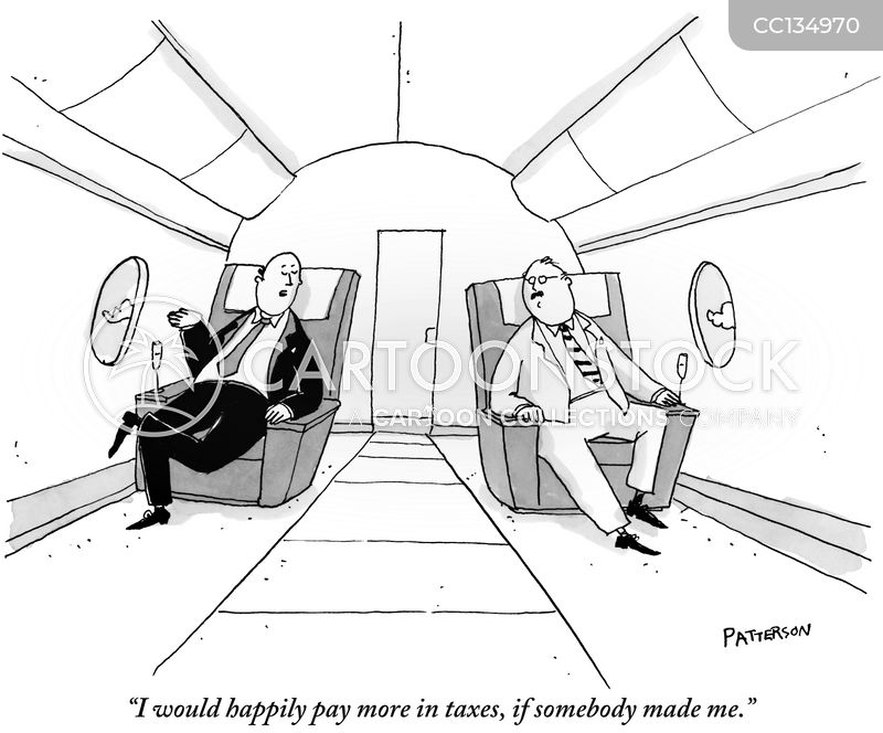 Private Airplanes cartoon