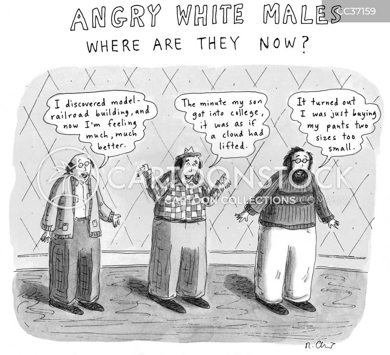 Angry White Males cartoon
