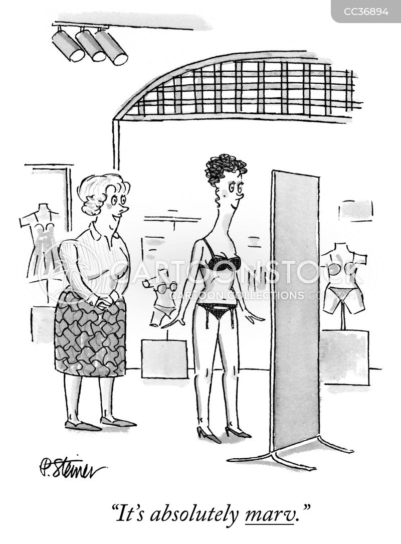 Women's Lingerie cartoon
