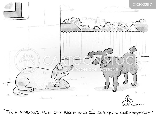 lap dogs cartoon