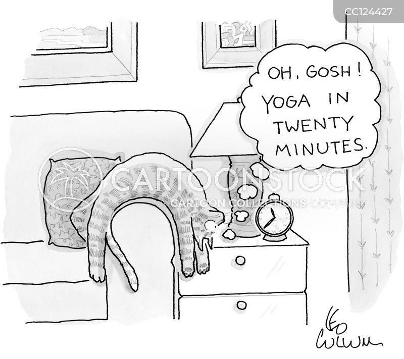 cat lover cartoon