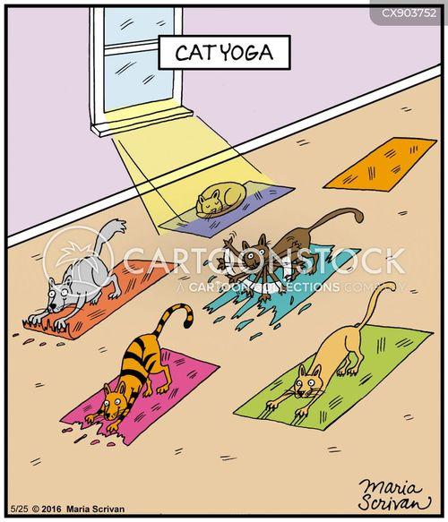 yoga instructors cartoon